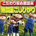 〈工場直売〉福井県特別栽培コシヒカリ 玄米30kg(送料無料)